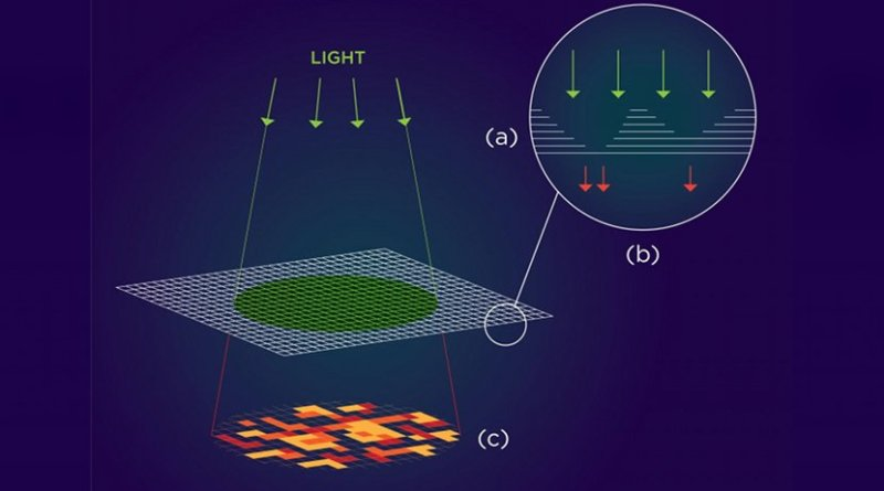 a) At monolayer thickness, this material has the optical properties of a semiconductor that emits light. At multilayer, the properties change and the material doesn't emit light. (b) Varying the thickness of each layer results in a thin film speckled with randomly occurring regions that alternately emit or block light. (c) Upon exposure to light, this pattern can be translated into a one-of-a-kind authentication key that could secure hardware components at minimal cost. Credit NYU Tandon: Althea Labre