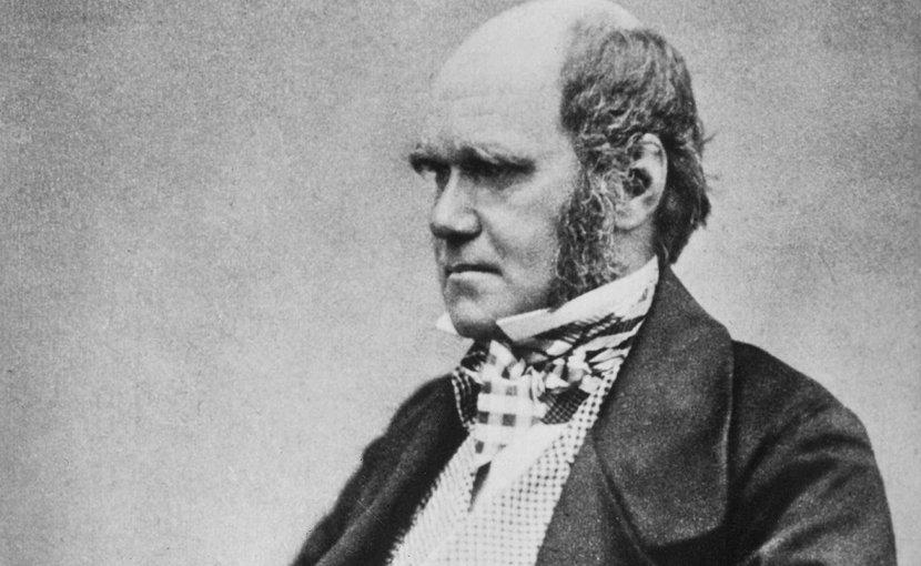 Charles Darwin. Photo: Wikipedia Commons.