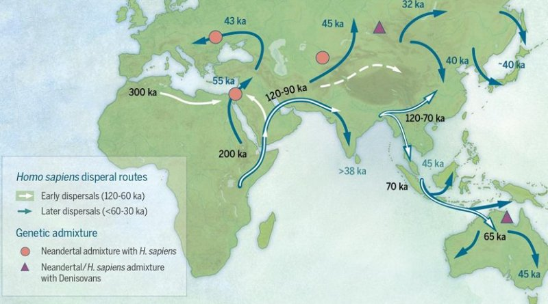 Map of sites and postulated migratory pathways associated with modern humans dispersing across Asia during the Late Pleistocene. Credit Bae et al. 2017. On the origin of modern humans: Asian perspectives. Science. Image by: Katerina Douka and Michelle O'Reilly