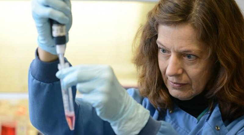 This is Dr. Gunnel Halldén, Queen Mary University of London Credit Pancreatic Cancer Research Fund