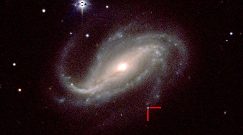 This is a color image of supernova 2016gkg in spiral galaxy NGC 613 taken by a group of UC Santa Cruz astronomers on Feb. 18, 2017, with the 1-meter Swope telescope. Credit CARNEGIE INSTITUTION FOR SCIENCE, LAS CAMPANAS OBSERVATORY, CHILE