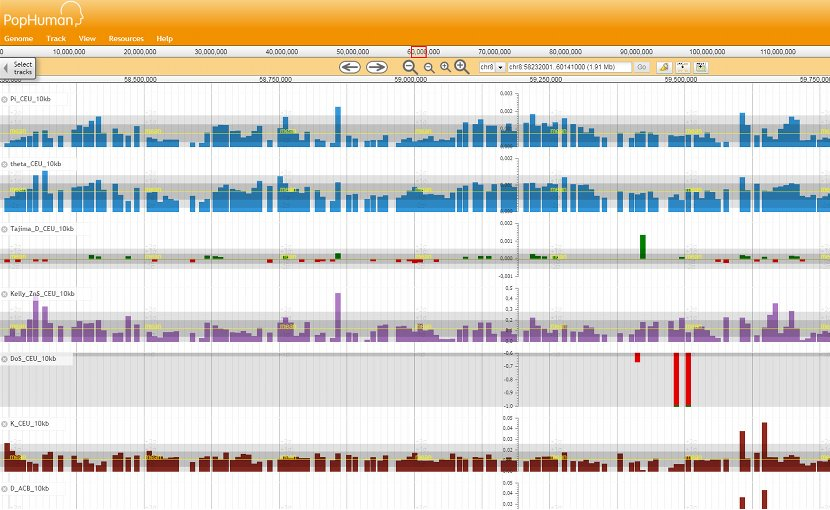 Screenshot of the PopHuman browser
