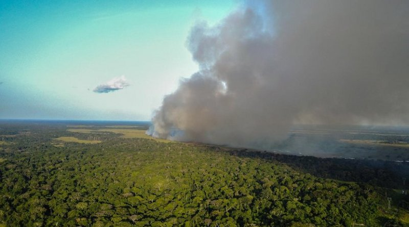 Researchers found that nitrogen from large-scale fires is being swept up into the atmosphere and deposited on the forests of the Congo Basin. Credit Travis Drake