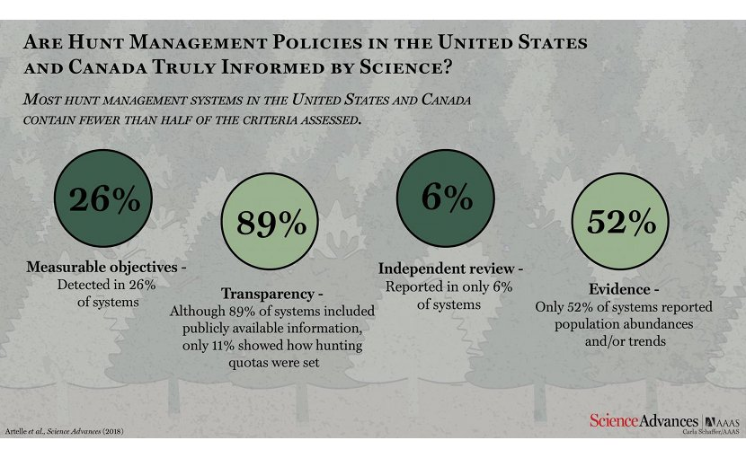 According to Artelle et al., most hunt management systems in the United States and Canada do not include science-based approaches. Credit Carla Schaffer / AAAS