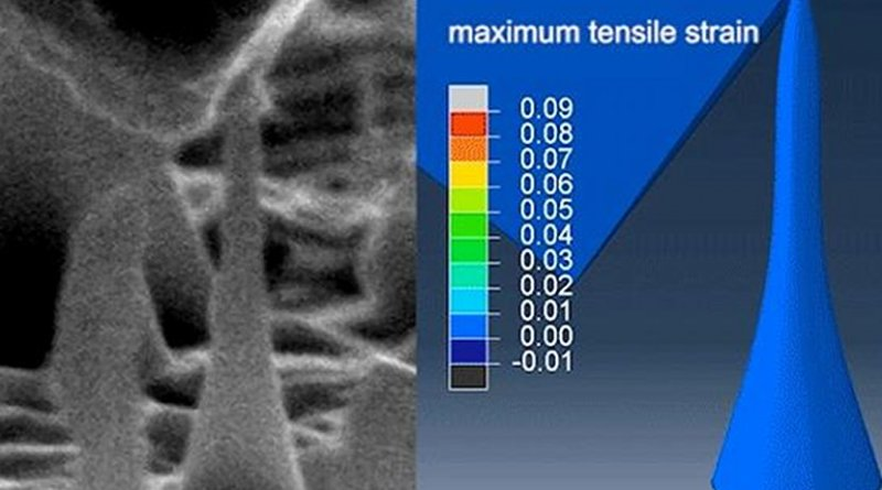 This image shows ultralarge and reversible elastic deformation. Credit MIT