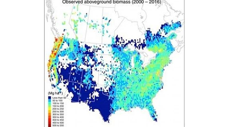This map shows the current distribution of forests across the United States and Canada. Credit Kai Zhu