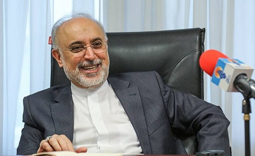 Iran's Ali Akbar Salehi. Photo Credit: Tasnim News Agency.