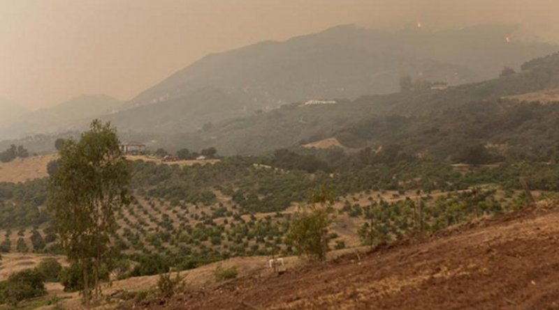Photo shows the Thomas Fire on Los Padres National Forest near Ventura, Calif., in 2017. Credit Forest Service Photo by Kari Greer
