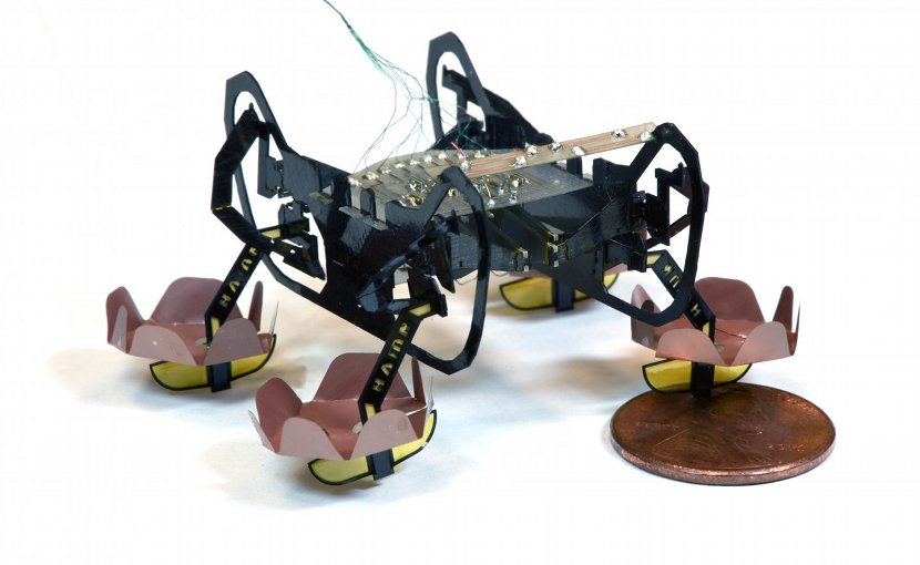 The next generation of Harvard's Ambulatory Microrobot (HAMR) can walk on land, swim on the surface of water, and walk underwater, opening up new environments for this little bot to explore. Credit (Credit: Yufeng Chen, Neel Doshi, and Benjamin Goldberg/Harvard University)