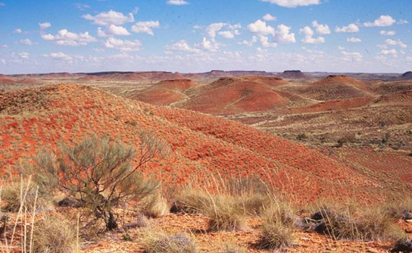 "The Jeerinah Formation in Western Australia, where a UW-led team found a sudden shift in nitrogen isotopes. ""Nitrogen isotopes tell a story about oxygenation of the surface ocean, and this oxygenation spans hundreds of kilometers across a marine basin and lasts for somewhere less than 50 million years,"" said lead author Matt Koehler. Credit Roger Buick / University of Washington"