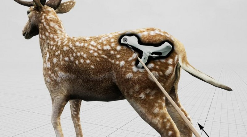 Estimated impact angle shown in relation to a standing fallow deer for the hunting lesion observed in the pelvis of an extinct fallow deer killed by Neandertals 120,000 years ago on a lakeshore close to current-day Halle in Germany Credit photo/©: Eduard Pop, MONREPOS Archaeological Research Center and Museum for Human Behavioral Evolution, Römisch-Germanisches Zentralmuseum, Leibniz Research Institute for Archaeology (RGZM