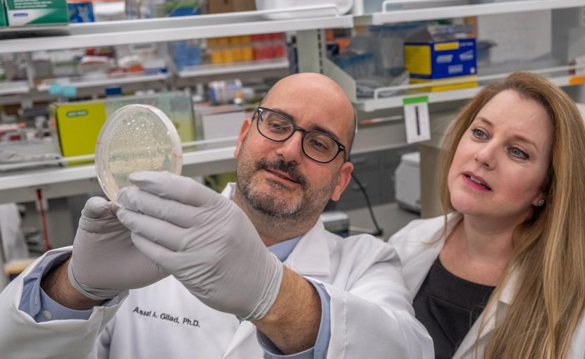 Assaf Gilad, a professor of biomedical engineering and radiology, and Galit Pelled, a medical bioengineering professor, have discovered an electromagnetic gene in glass catfish that could one day help those with Parkinson's and epilepsy. Credit Derrick Turner, Michigan State University