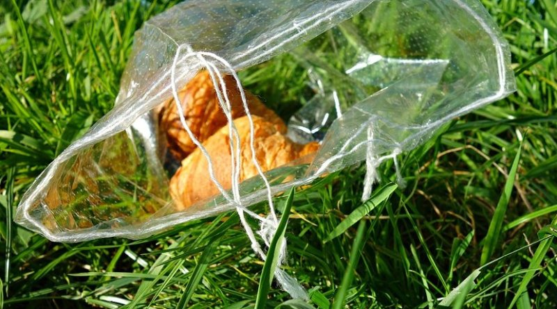 food waste litter garbage