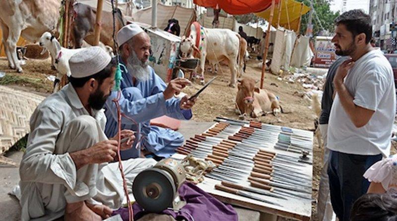 A view of makeshift camp set up for sacrificial animals in Karachi's busy Gulistan-e-Johar area. (Photo by Zahid Hussain/ucanews.com)