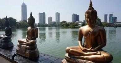 Buddha statues in Colombo, Sri Lanka.