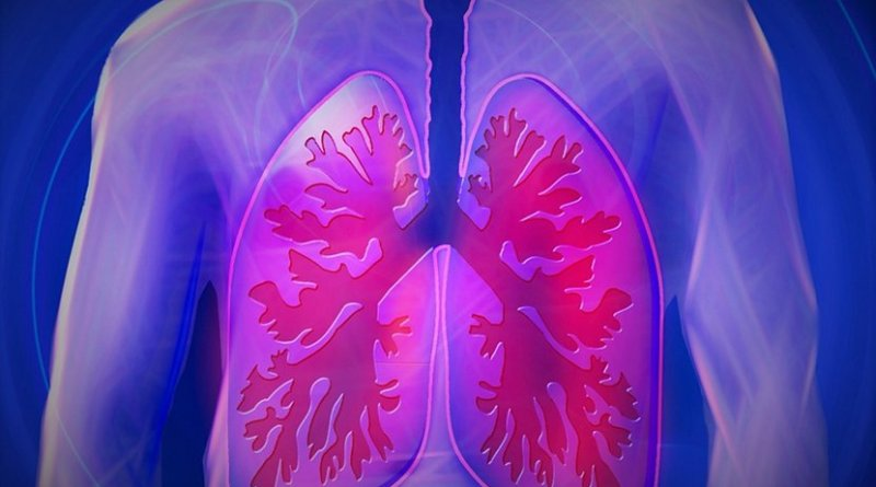 lungs medicine copd