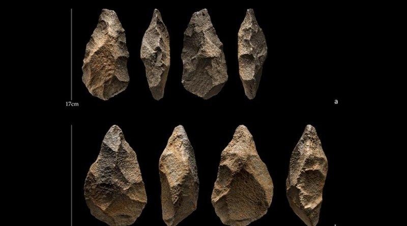 These are handaxes from the site of Saffaqah, Saudi Arabia. Credit Palaeodeserts (Ian R. Cartwright)