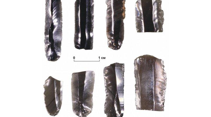 Products from obsidian found on Zhokhov site Credit Vladimir V. Pitulko et al