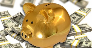 dollar piggy bank