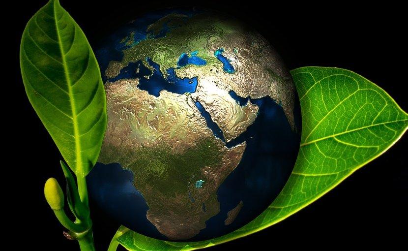 earth globe greenwash eco-friendly