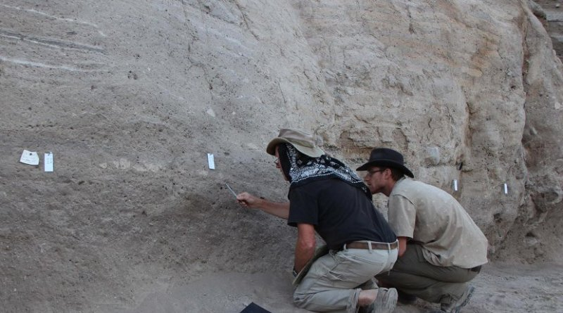 Study authors Jay Quade (left) and Jordan Abell (right) looking for optimal samples at the site of an ancient Turkish settlement where salts left behind by animal and human urine give clues about the development of livestock herding. Credit Güneş Duru