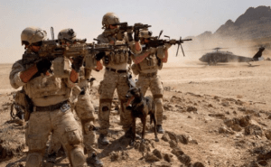 African Lion 2019: Joint US-Morocco Military Exercise
