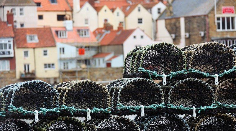 crab pot fishing basket
