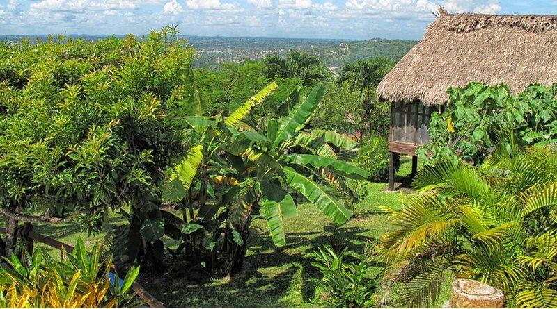 Agricultural land in Peru
