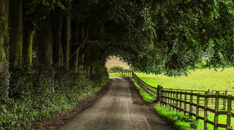 Country road in England