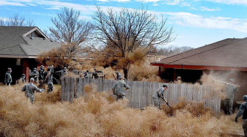 Commandos from Cannon Air Force Base, N.M., clear tumbleweeds from a residential area in Clovis, N.M., 2014. Credit U.S. Air Force/Senior Airman Ericka Engblom