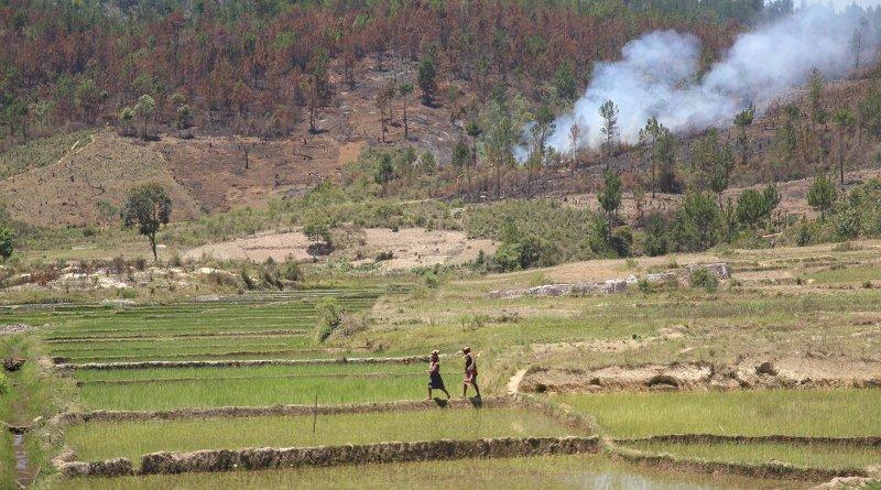Deforestation in Madagascar Credit Johannes Nyman