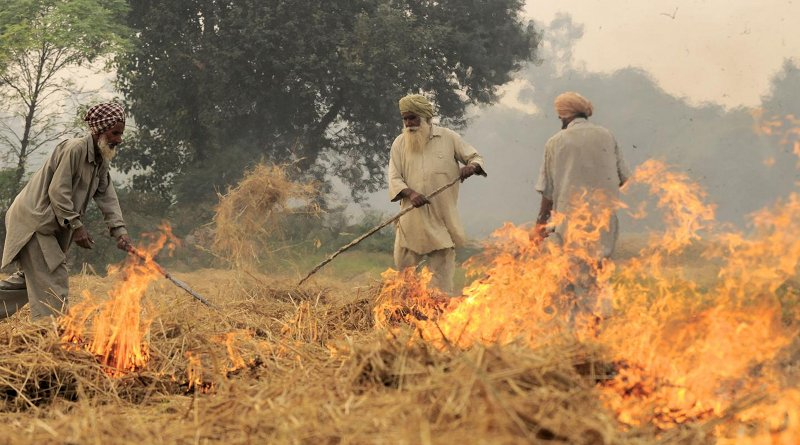 Burning of rice residues in southeast Punjab, India, prior to the wheat season. Credit ©Neil Palmer/CIAT