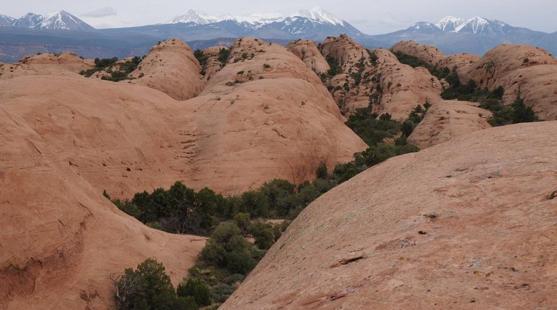 Navajo Sandstone from the Moab area taken by study co-author Stephen T. Hasiotis. Credit Stephen T. Hasiotis