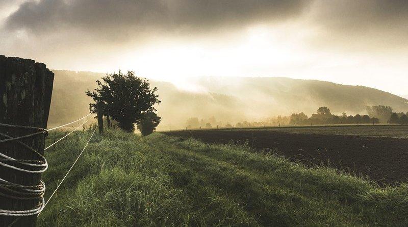 farm fence sunlight