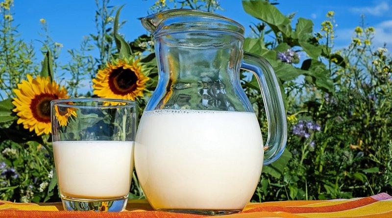 milk pitcher glass raw