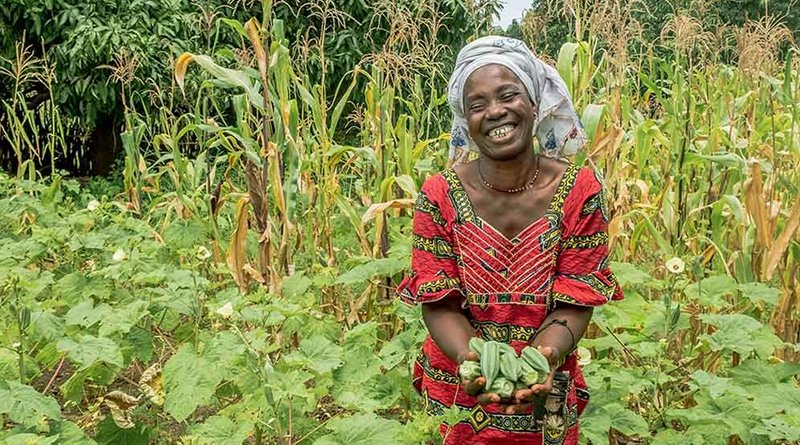 Seeds, tools and practical advice can make a world of difference to small-scale farmers. Copyright: One Acre Fund
