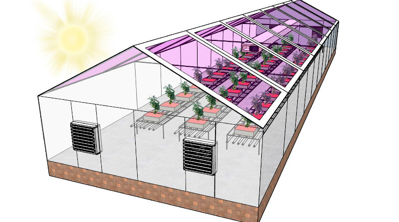 Many greenhouses could become energy neutral by using see-through solar panels to harvest energy - primarily from the wavelengths of light that plants don't use for photosynthesis. In some places this could make greenhouses energy neutral, or even allow them to generate enough electricity to sell it back to the grid -- creating a new revenue stream for growers. CREDIT Brendan O'Connor, NC State University