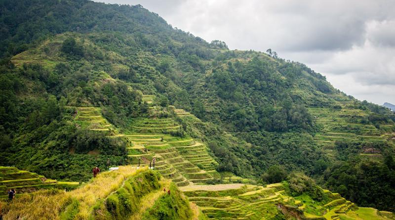 Philippines Rice Terraces