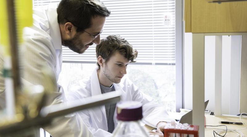 Jason S. McLellan, associate professor of molecular biosciences, left, and graduate student Daniel Wrapp, right, work in the McLellan Lab at The University of Texas at Austin Monday Feb. 17, 2020. CREDIT Vivian Abagiu/Univ. of Texas at Austin