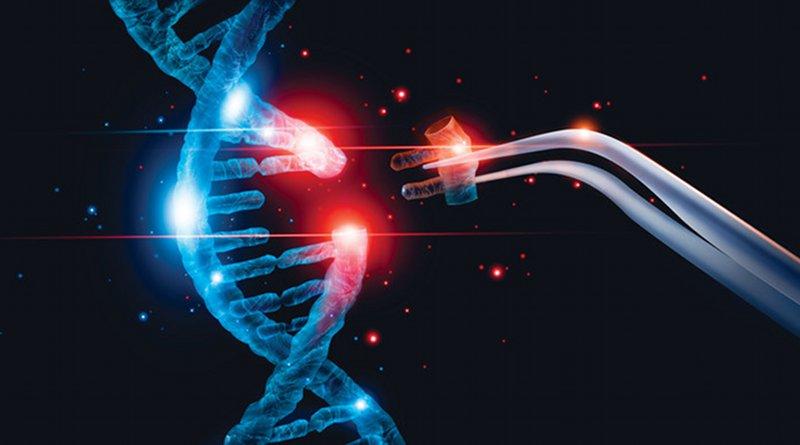 Cut of replacing part of a DNA molecule