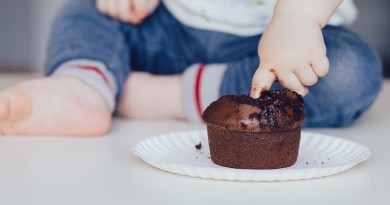 Cupcake Baby Food Child Chocolate Muffin Finger