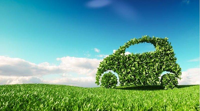 car auto green renewable plant © petrmalinak, Shutterstock