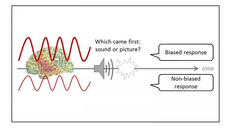 The strength of alpha brain waves (left) reveals biased decisions (right). CREDIT Grabot and Kayser, JNeurosci 2020