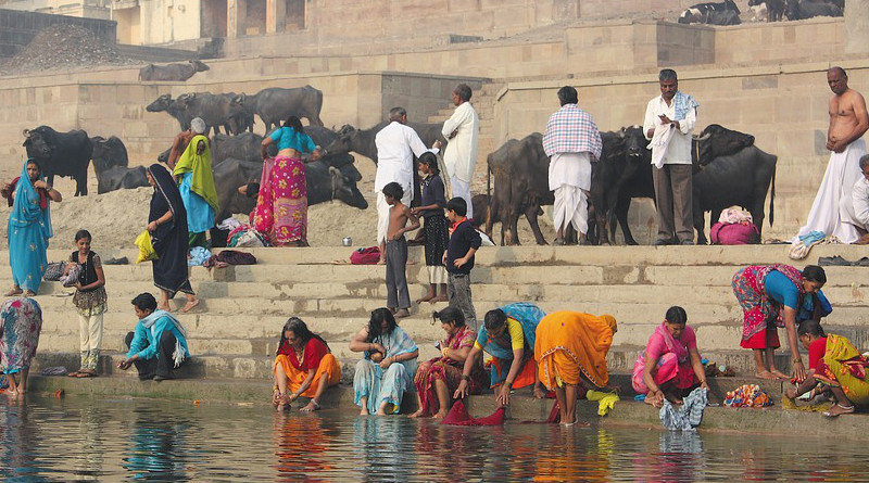 India Banner System The Ganges River Bath Cow