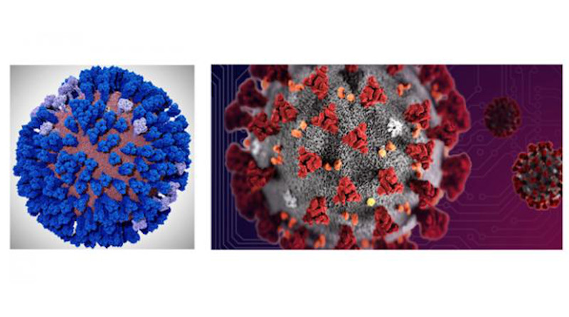 A coronavirus envelope all-atom computer model is being developed by the Amaro Lab of UC San Diego on the NSF-funded Frontera supercomputer of TACC at UT Austin. Biochemist Rommie Amaro hopes to build on her recent success with all-atom in?uenza virus simulations (left) and apply them to the coronavirus (right). CREDIT Lorenzo Casalino (UCSD), TACC