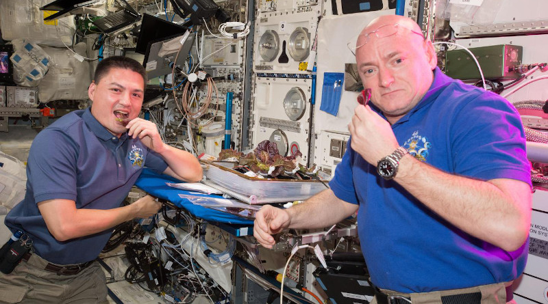Astronauts Scott Kelly and Kjell Lindgren taste the lettuce grown onboard the ISS in August 2014 CREDIT NASA