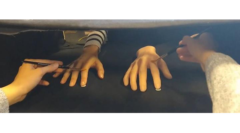 A demonstration of the Rubber Hand Illusion. CREDIT University of Sussex
