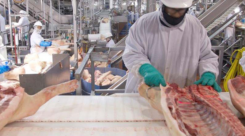Workers in an American hog slaughtering and processing plant. Photo Credit: U.S. Government Accountability Office, Wikipedia Commons