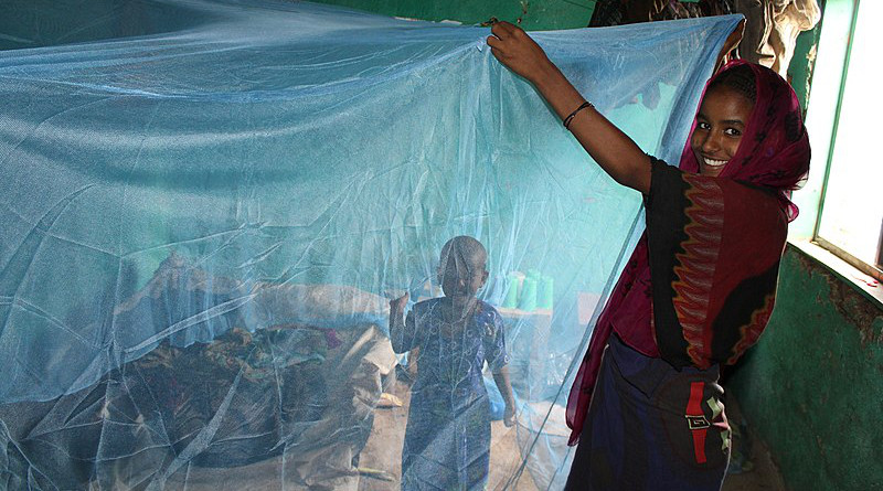 An Ethiopian mother with a long lasting insecticide-treated mosquito net. Photo Credit: Ethiopia's President's Malaria Initiative