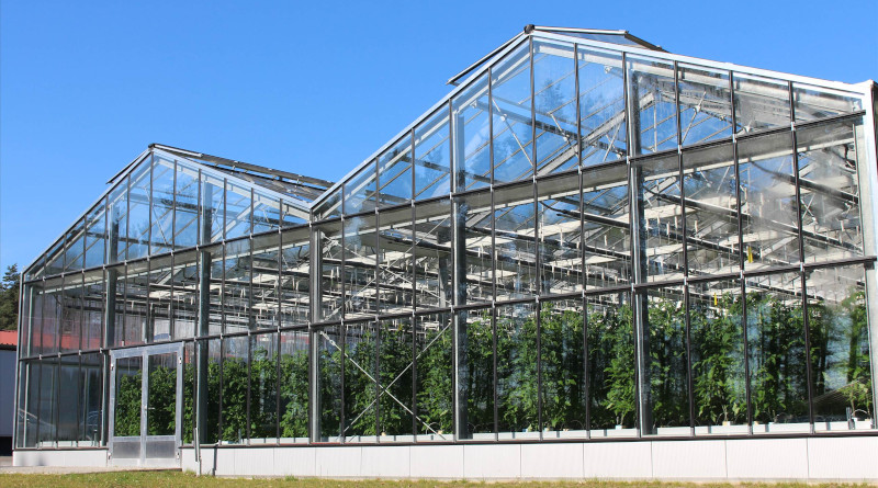 """Greenhouse of the aquaponics facility of the """"Müritzfischer"""" in Waren, Germany. 